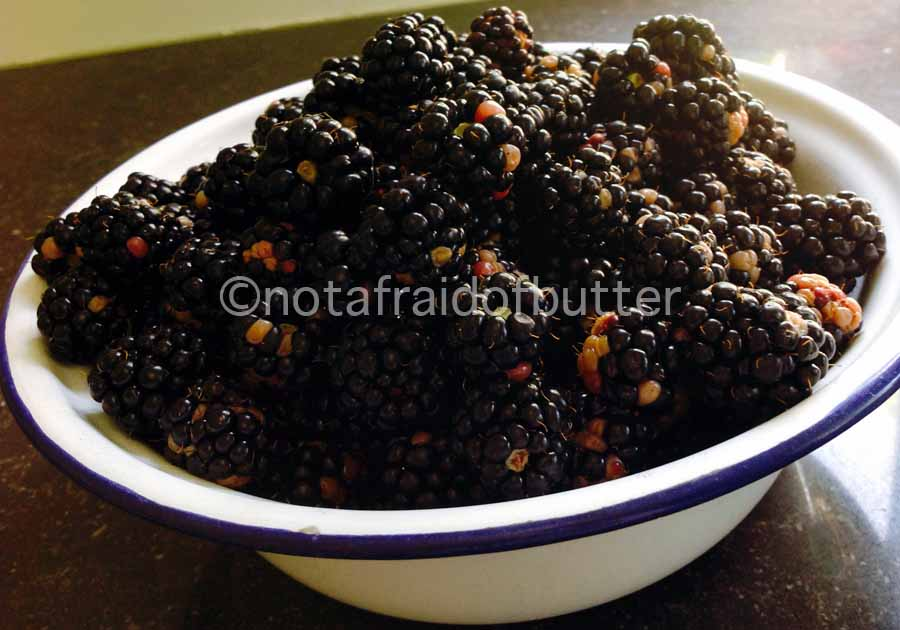 notafraidofbutter.nl | fresh picked blackberries